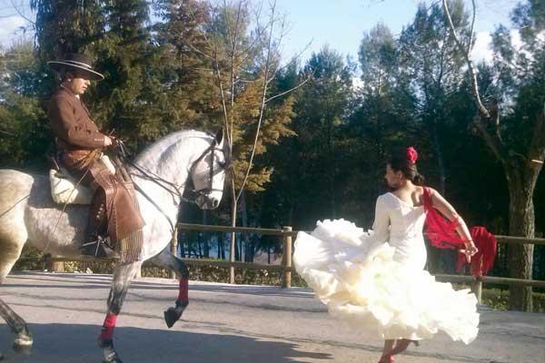 Dancing_horse_00