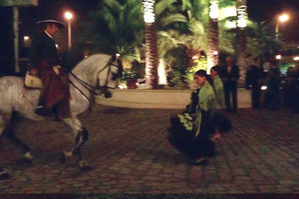 Dancing_horse_6