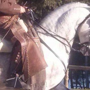 Dancing_horse_7