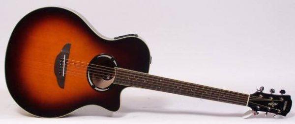 Electro acoustic guitar hire Costa del Sol