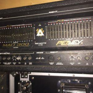 Peavey MAQ 300