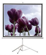 projector screen hire