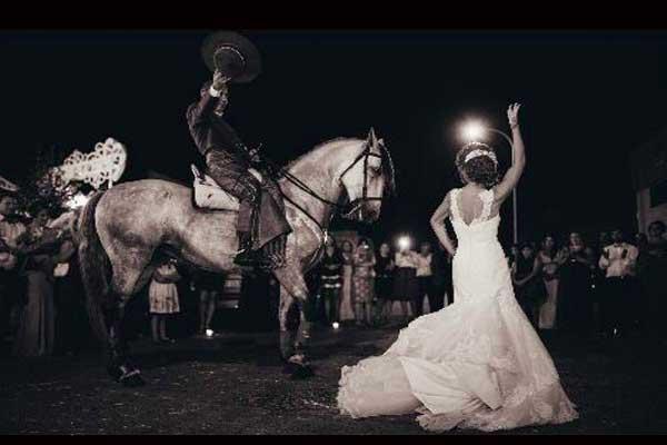 Dancing_horse_1
