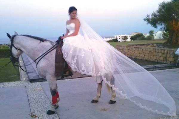 Dancing_horse_Bride