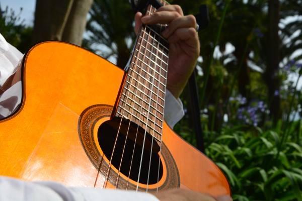 08_Mark_Honeyman_Guitar